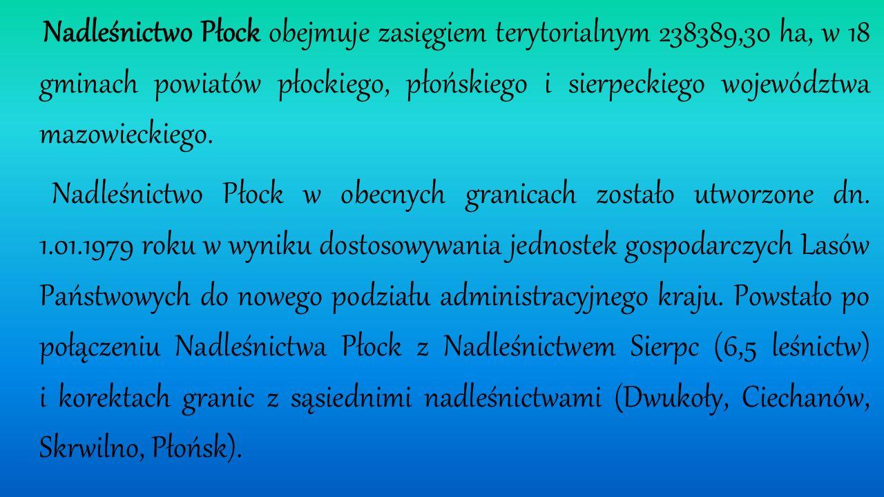 Bielska 24