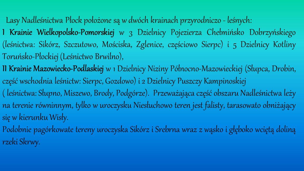Lasy Nadleśnictwa Płock położone są w dwóch krainach przyrodniczo - leśnych: I Krainie Wielkopolsko-Pomorskiej w 3 Dzielnicy Pojezierza Chełmińsko Dobrzyńskiego (leśnictwa: Sikórz, Szczutowo, Mościska, Zglenice, częściowo Sierpc) i 5 Dzielnicy Kotliny Toruńsko-Płockiej (Leśnictwo Brwilno), II Krainie Mazowiecko-Podlaskiej w 1 Dzielnicy Niziny Północno-Mazowieckiej (Słupca, Drobin, część wschodnia leśnictw: Sierpc, Gozdowo) i 2 Dzielnicy Puszczy Kampinoskiej ( leśnictwa: Słupno, Miszewo, Brody, Podgórze).