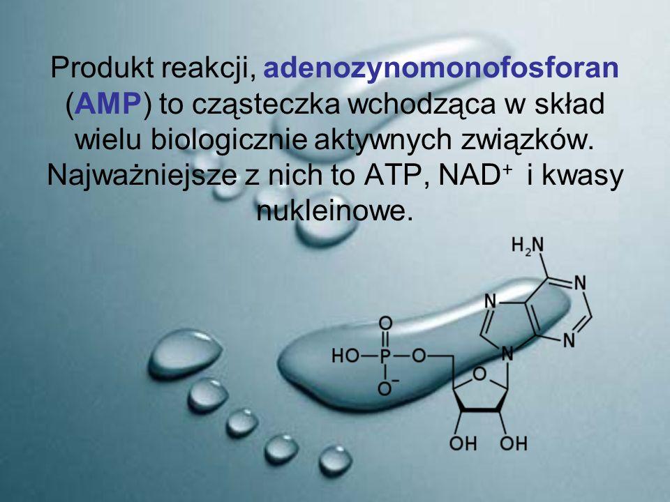 Produkt reakcji, adenozynomonofosforan (AMP) to cząsteczka wchodząca w skład wielu biologicznie aktywnych związków. Najważniejsze z nich to ATP, NAD +