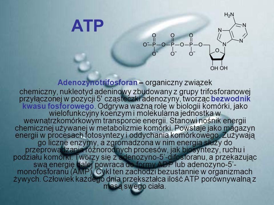 ATP Adenozynotrifosforan – organiczny związek chemiczny, nukleotyd adeninowy zbudowany z grupy trifosforanowej przyłączonej w pozycji 5' cząsteczki ad