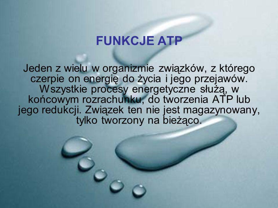 FUNKCJE ATP Jeden z wielu w organizmie związków, z którego czerpie on energię do życia i jego przejawów. Wszystkie procesy energetyczne służą, w końco