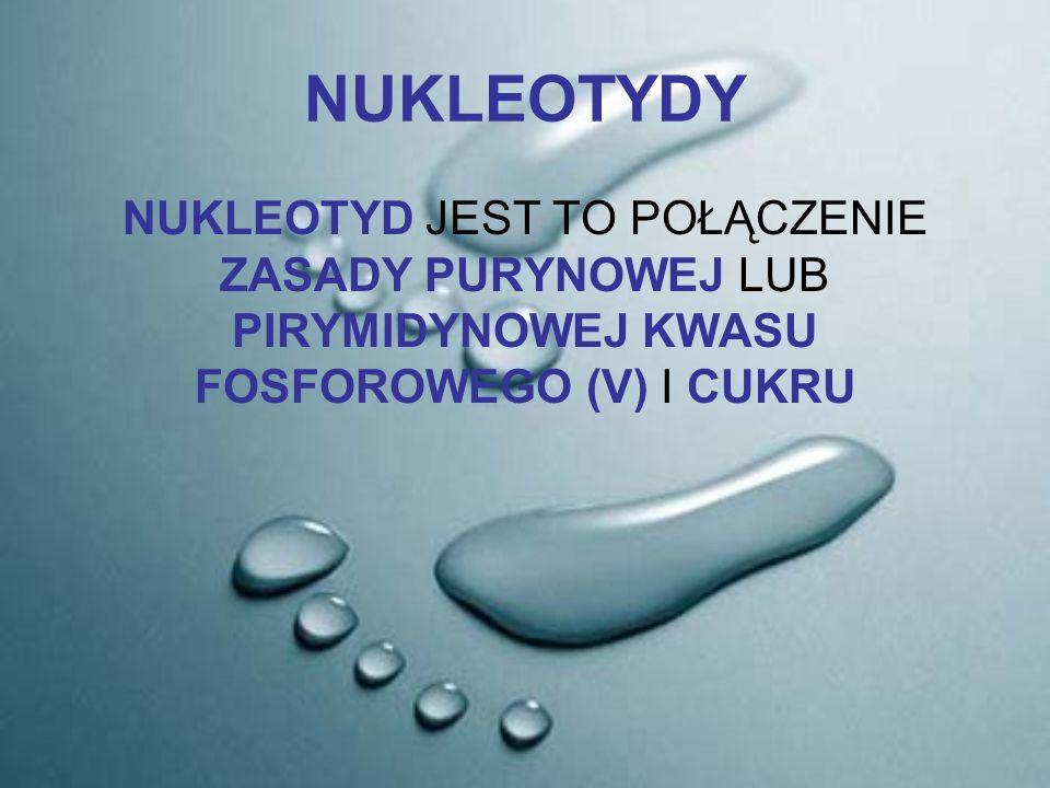 Nukleozyd poddany reakcji estryfikacji kwasem fosforowym (V) wytworzy nukleotyd.