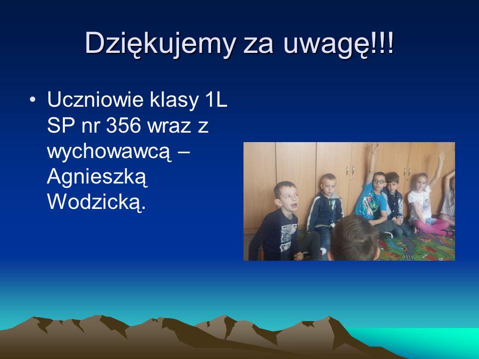 Dziękujemy za uwagę!!! Uczniowie klasy 1L SP nr 356 wraz z wychowawcą – Agnieszką Wodzicką.