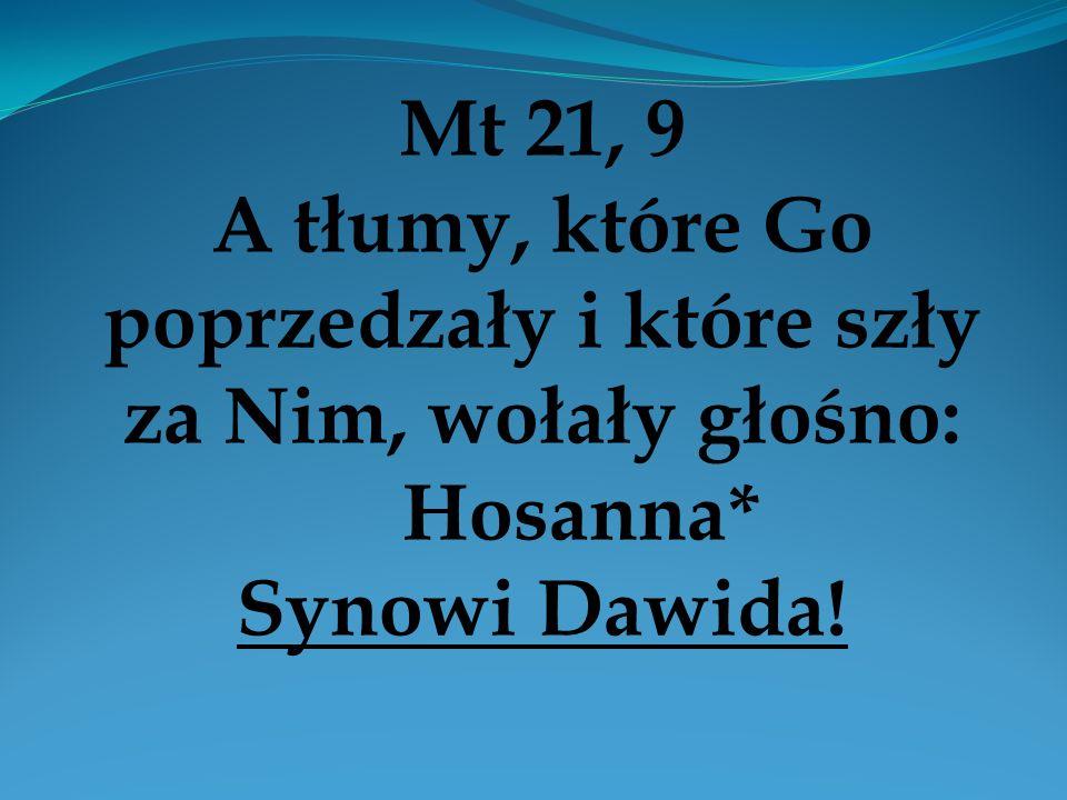 Mt 21, 9 A tłumy, które Go poprzedzały i które szły za Nim, wołały głośno: Hosanna* Synowi Dawida!