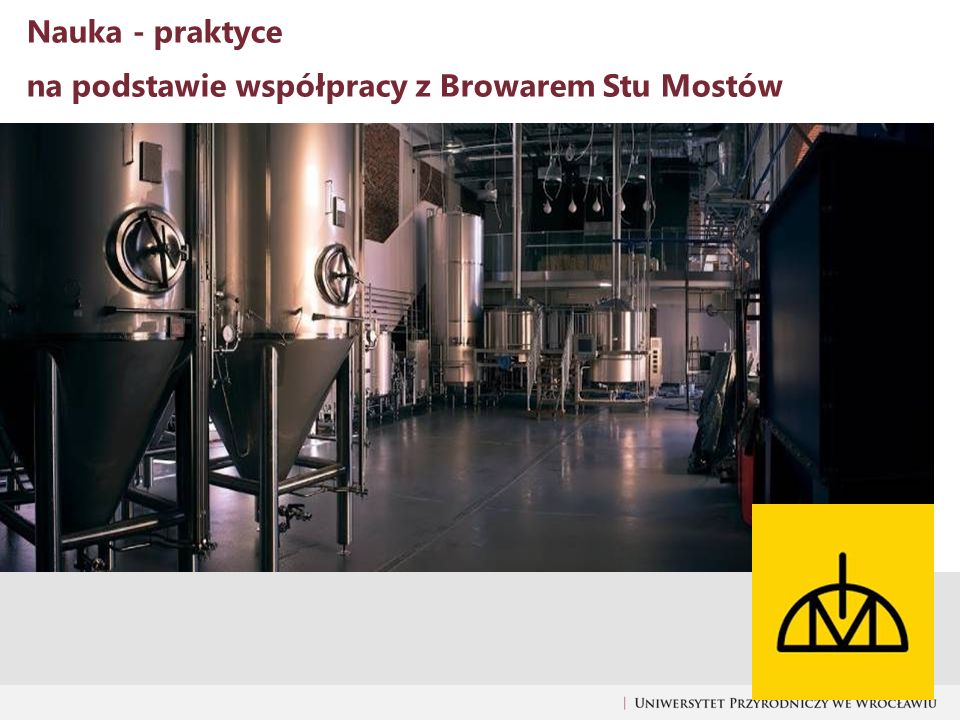Nauka - praktyce na podstawie współpracy z Browarem Stu Mostów