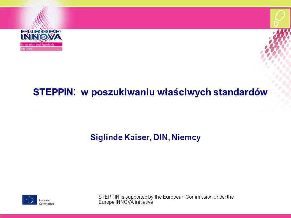 www.europe-innova.org Wskazówki praktyczne  Krok 3: Wybór właściwej normy –Jeśli istnieją formalne/oficjalne normy (np.