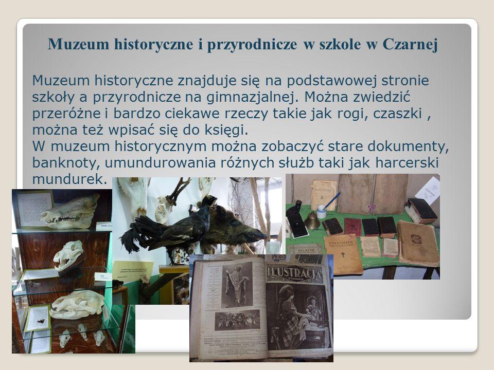 Muzeum historyczne i przyrodnicze w szkole w Czarnej Muzeum historyczne znajduje się na podstawowej stronie szkoły a przyrodnicze na gimnazjalnej.