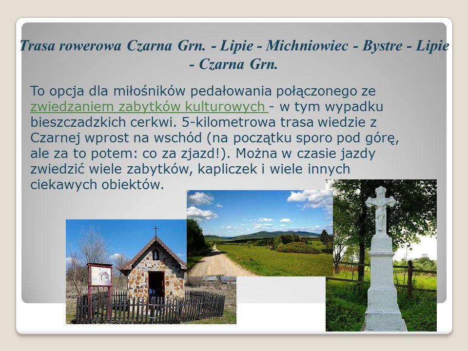 Trasa rowerowa Czarna Grn. - Lipie - Michniowiec - Bystre - Lipie - Czarna Grn.