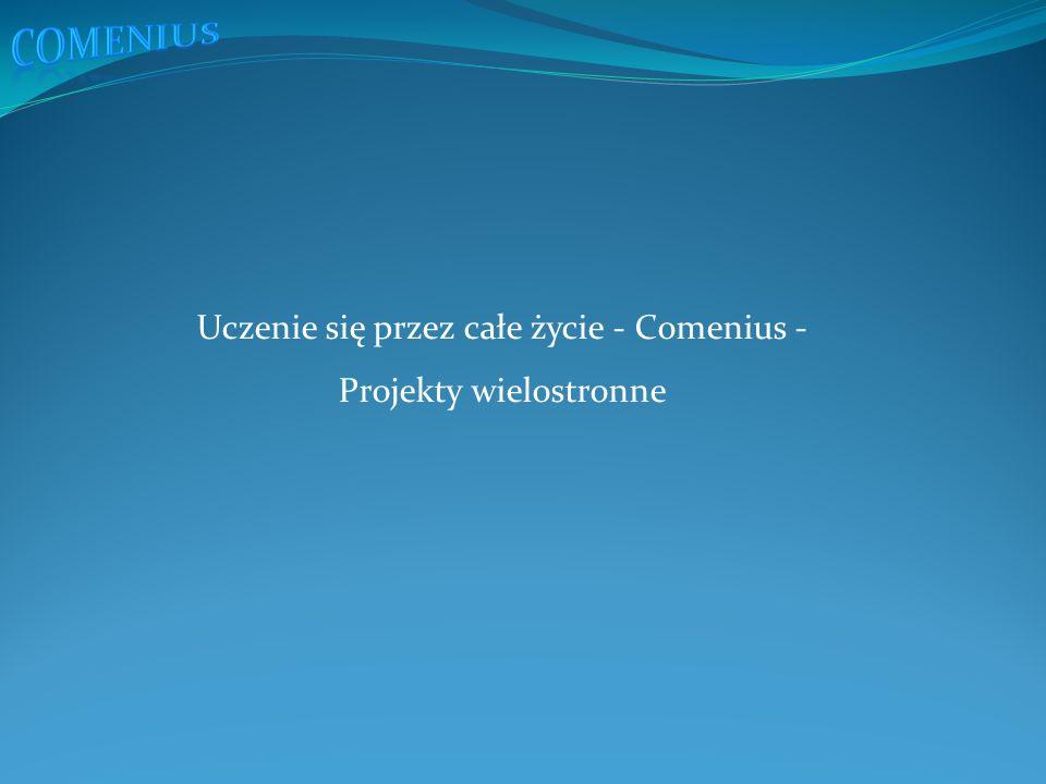 Uczenie się przez całe życie - Comenius - Projekty wielostronne