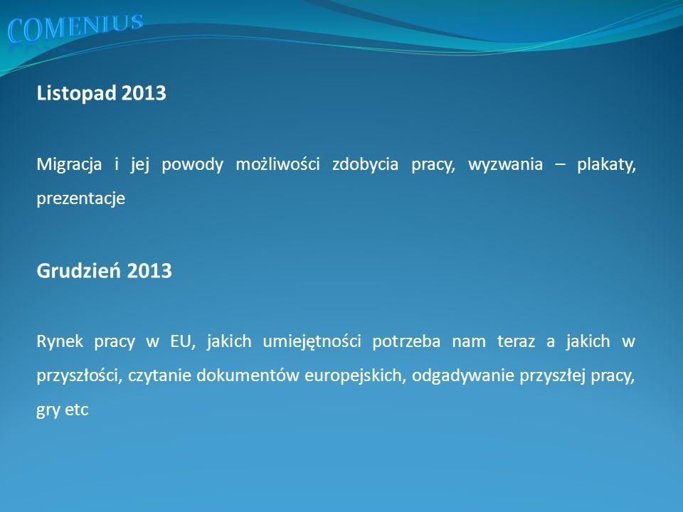 Listopad 2013 Migracja i jej powody możliwości zdobycia pracy, wyzwania – plakaty, prezentacje Grudzień 2013 Rynek pracy w EU, jakich umiejętności potrzeba nam teraz a jakich w przyszłości, czytanie dokumentów europejskich, odgadywanie przyszłej pracy, gry etc