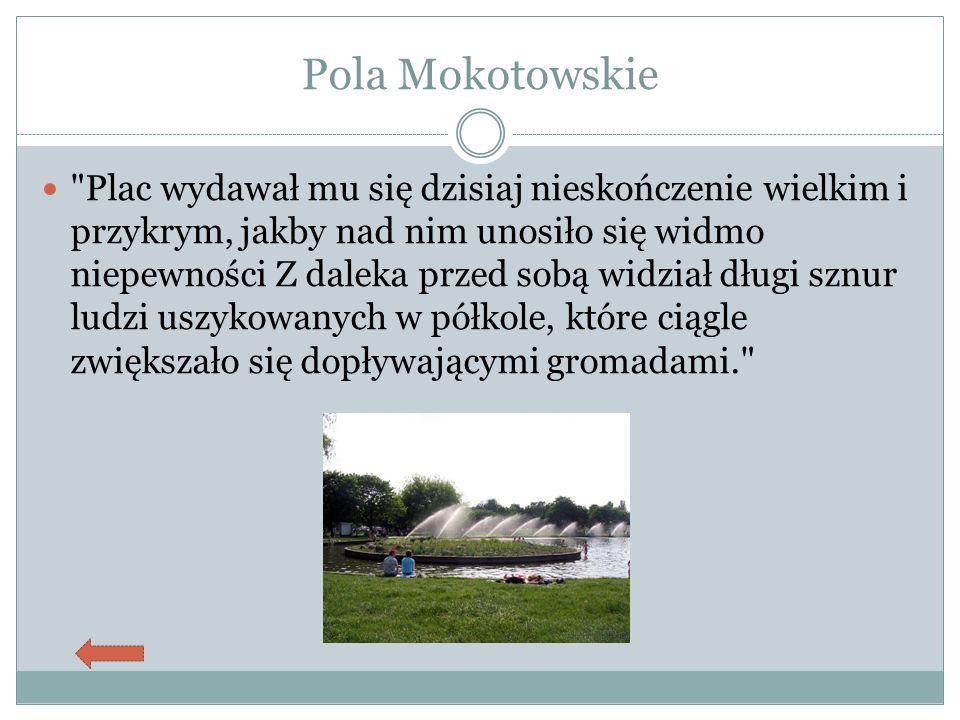 Pola Mokotowskie