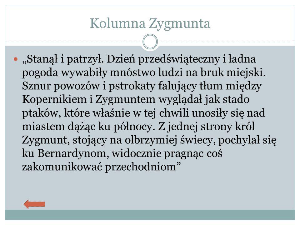 """Kolumna Zygmunta """"Stanął i patrzył."""