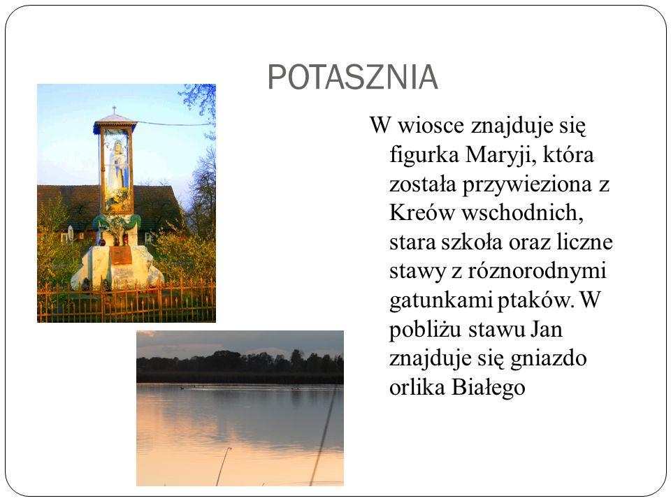 POTASZNIA W wiosce znajduje się figurka Maryji, która została przywieziona z Kreów wschodnich, stara szkoła oraz liczne stawy z róznorodnymi gatunkami ptaków.