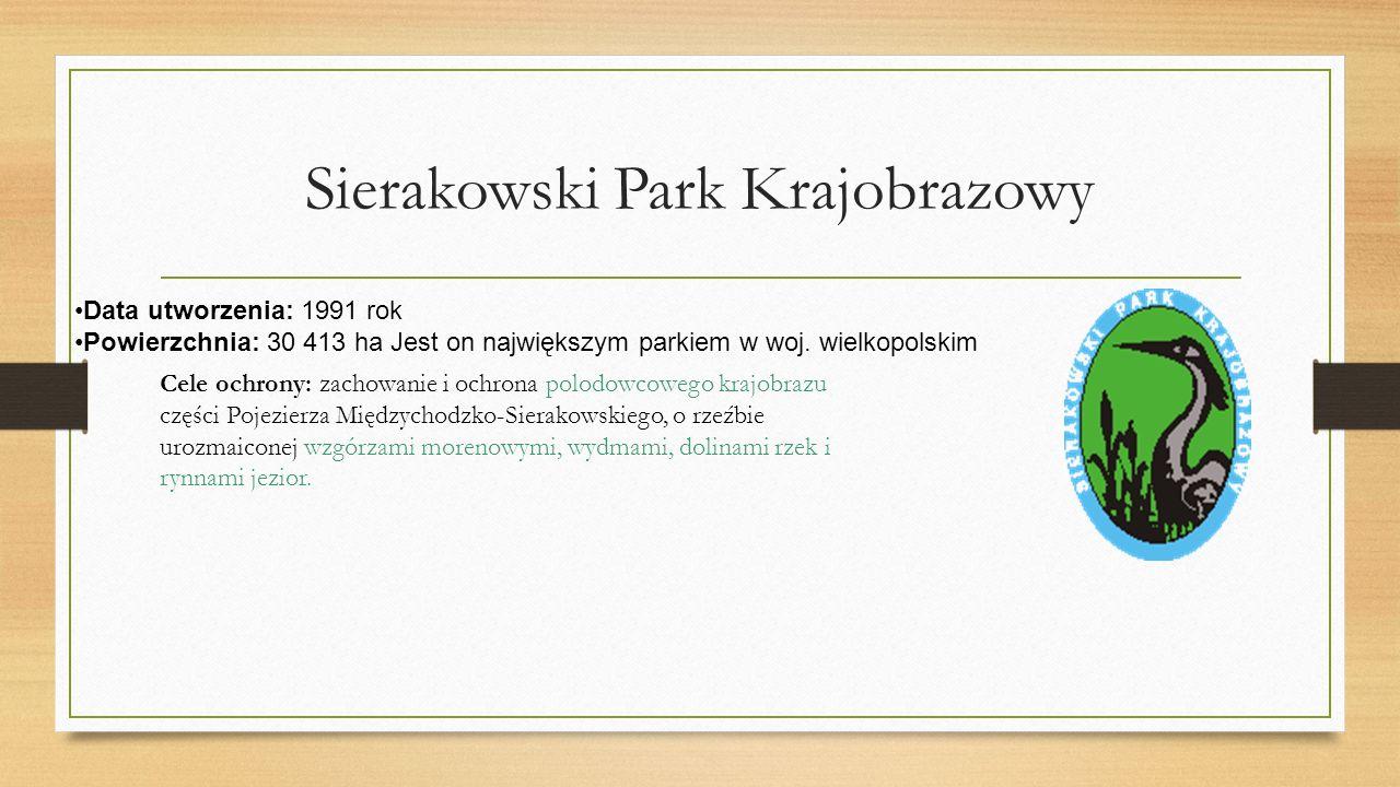 Sierakowski Park Krajobrazowy Data utworzenia: 1991 rok Powierzchnia: 30 413 ha Jest on największym parkiem w woj.