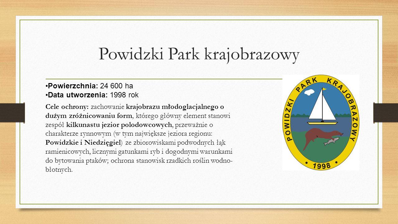 Powidzki Park krajobrazowy Powierzchnia: 24 600 ha Data utworzenia: 1998 rok Cele ochrony: zachowanie krajobrazu młodoglacjalnego o dużym zróżnicowaniu form, którego główny element stanowi zespół kilkunastu jezior polodowcowych, przeważnie o charakterze rynnowym (w tym największe jeziora regionu: Powidzkie i Niedzięgiel) ze zbiorowiskami podwodnych łąk ramienicowych, licznymi gatunkami ryb i dogodnymi warunkami do bytowania ptaków; ochrona stanowisk rzadkich roślin wodno- błotnych.