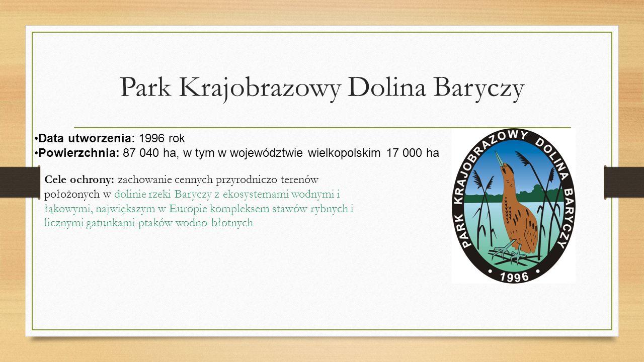 Park Krajobrazowy Dolina Baryczy Data utworzenia: 1996 rok Powierzchnia: 87 040 ha, w tym w województwie wielkopolskim 17 000 ha Cele ochrony: zachowanie cennych przyrodniczo terenów położonych w dolinie rzeki Baryczy z ekosystemami wodnymi i łąkowymi, największym w Europie kompleksem stawów rybnych i licznymi gatunkami ptaków wodno-błotnych
