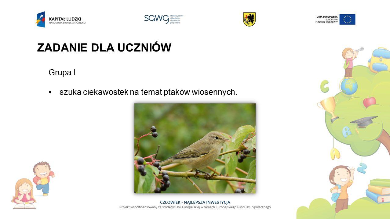 ZADANIE DLA UCZNIÓW Grupa I szuka ciekawostek na temat ptaków wiosennych.
