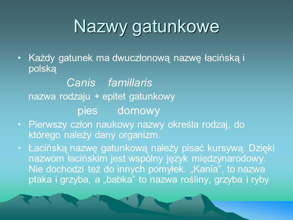 Nazwy gatunkowe Każdy gatunek ma dwuczłonową nazwę łacińską i polską Canis famillaris nazwa rodzaju + epitet gatunkowy pies domowy Pierwszy człon nauk