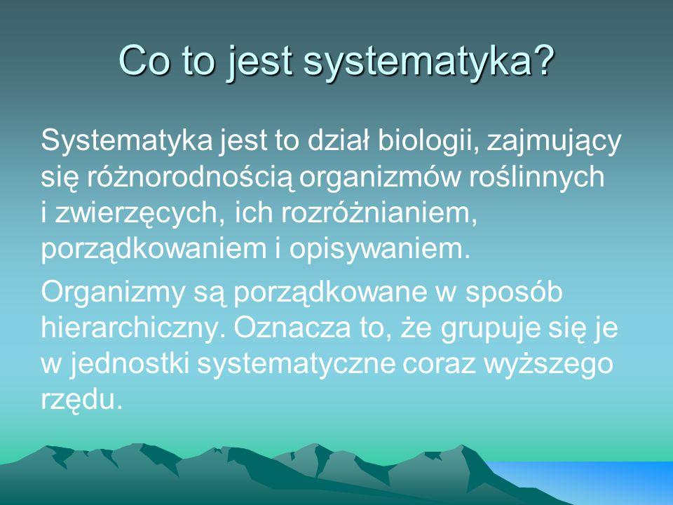 Co to jest systematyka? Systematyka jest to dział biologii, zajmujący się różnorodnością organizmów roślinnych i zwierzęcych, ich rozróżnianiem, porzą