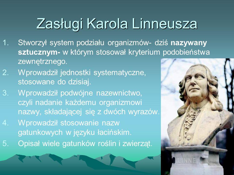 Zasługi Karola Linneusza 1.Stworzył system podziału organizmów- dziś nazywany sztucznym- w którym stosował kryterium podobieństwa zewnętrznego. 2.Wpro