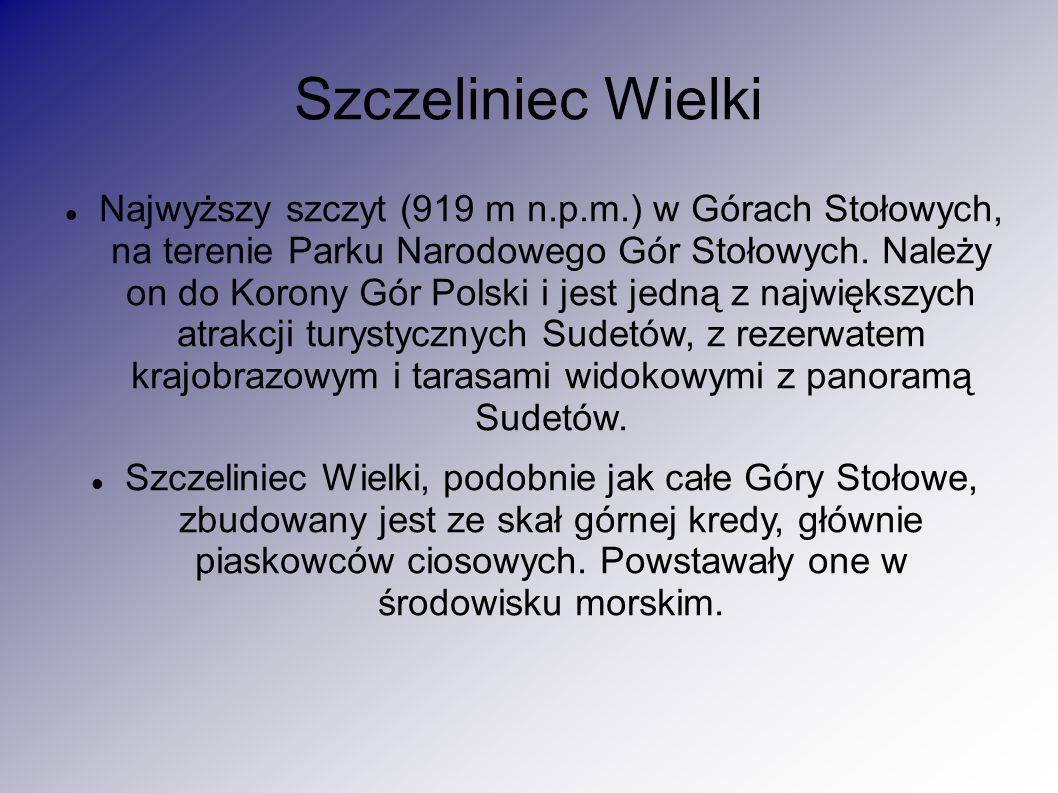 Szczeliniec Wielki Najwyższy szczyt (919 m n.p.m.) w Górach Stołowych, na terenie Parku Narodowego Gór Stołowych.