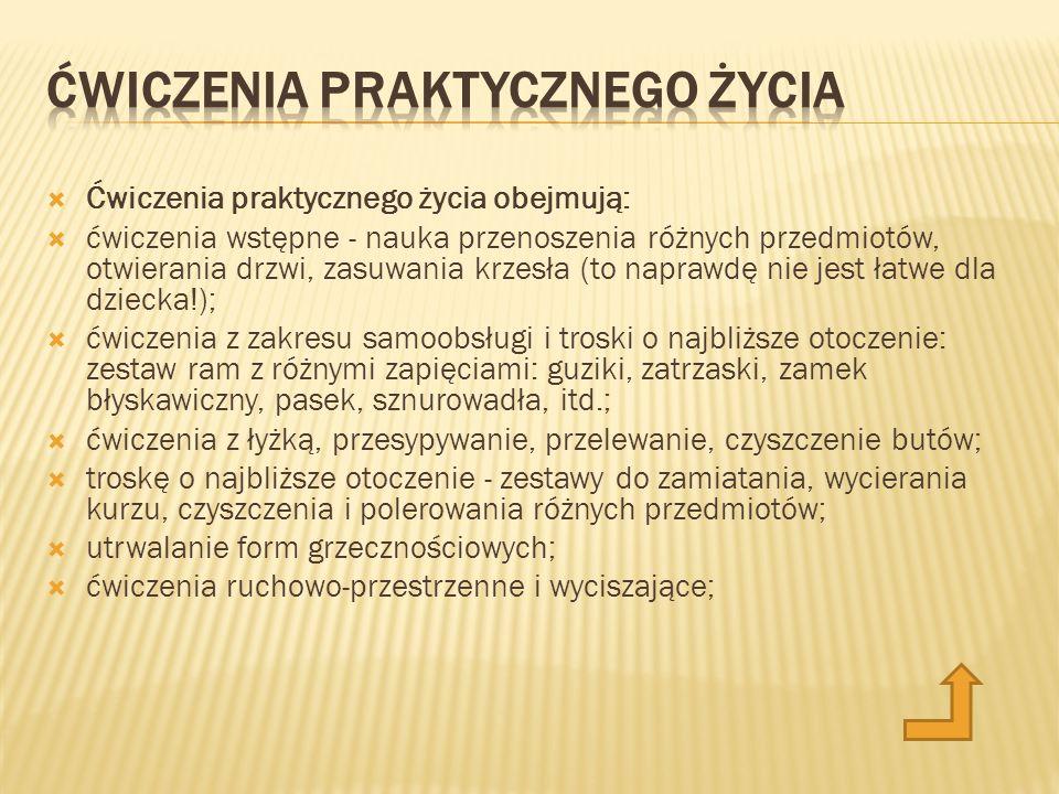 http://www.centrummontessori.pl/
