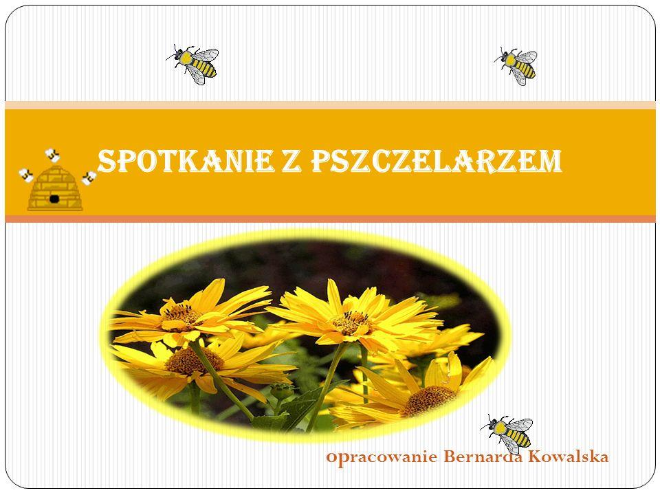 op racowanie Bernarda Kowalska Spotkanie z pszczelarzem