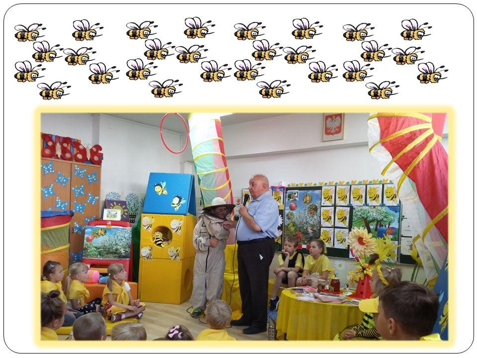 Poznawaliśmy cykl rozwojowy pszczoły.
