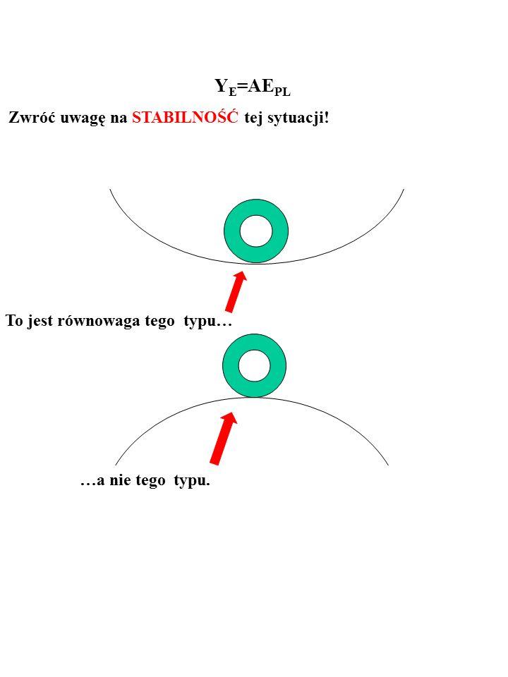 13 To jest równowaga tego typu… Y E =AE PL Zwróć uwagę na STABILNOŚĆ tej sytuacji!