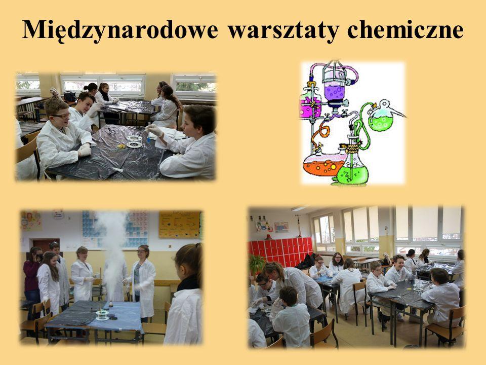 Międzynarodowe warsztaty chemiczne