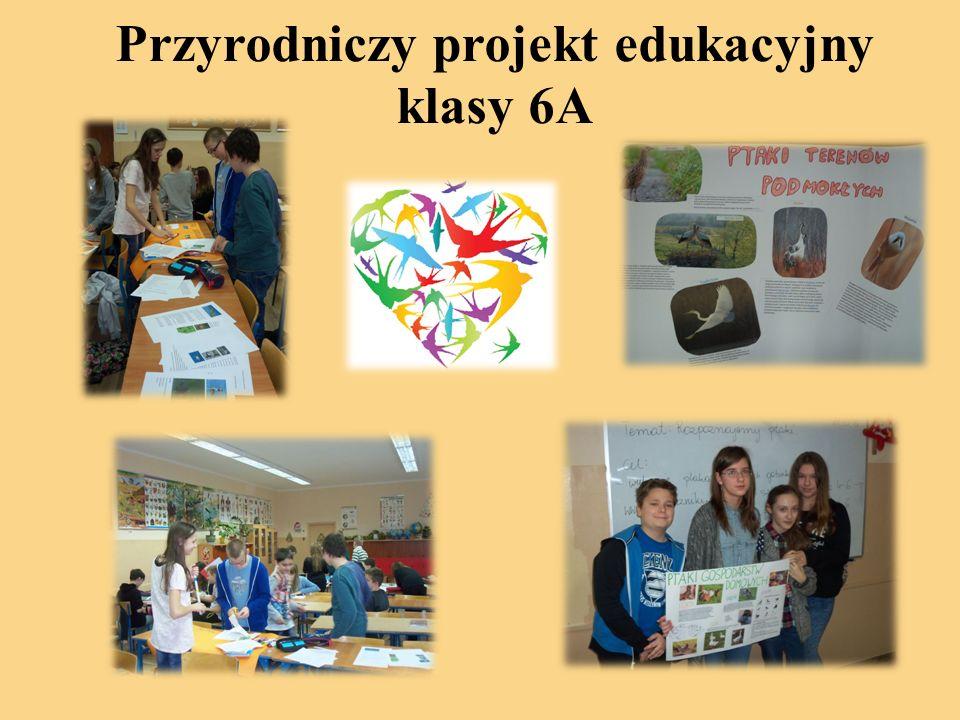 Przyrodniczy projekt edukacyjny klasy 6A