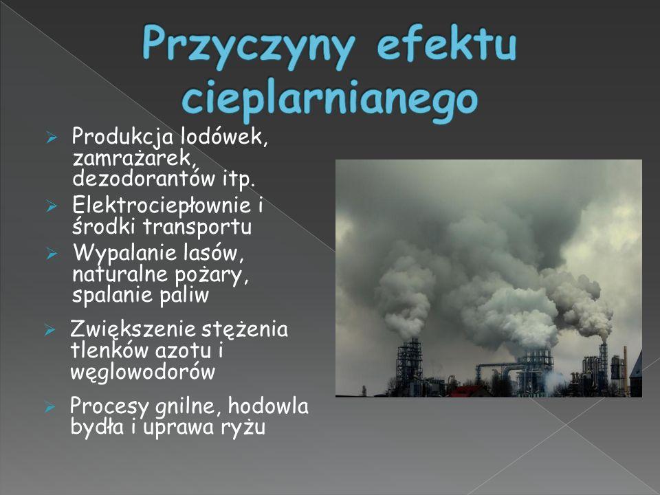  Produkcja lodówek, zamrażarek, dezodorantów itp.  Elektrociepłownie i środki transportu  Wypalanie lasów, naturalne pożary, spalanie paliw  Zwięk