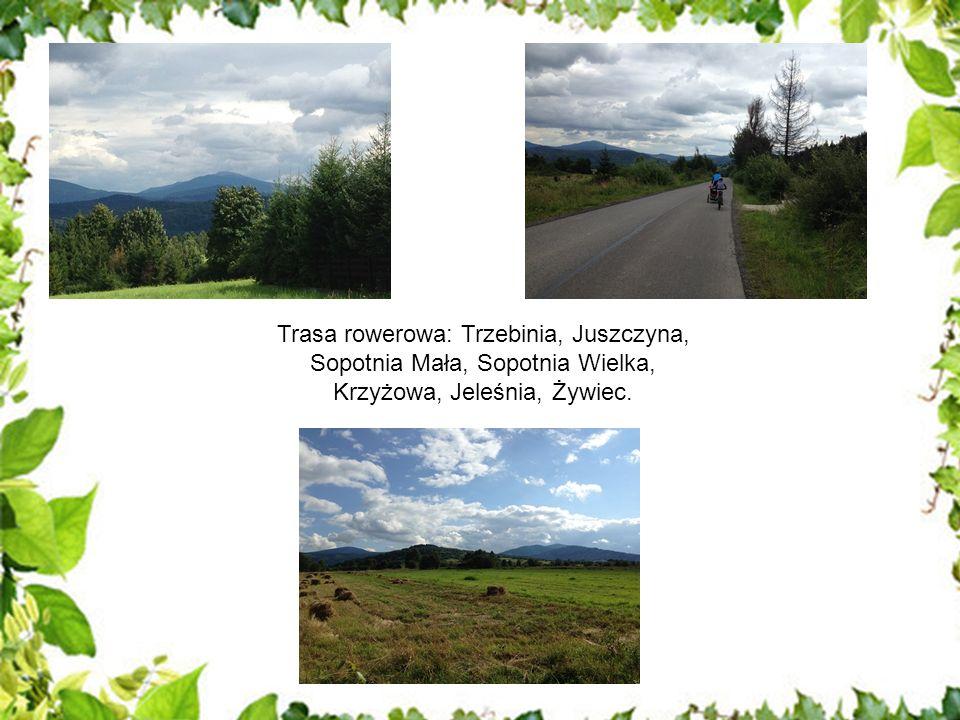 Trasa rowerowa: Trzebinia, Juszczyna, Sopotnia Mała, Sopotnia Wielka, Krzyżowa, Jeleśnia, Żywiec.