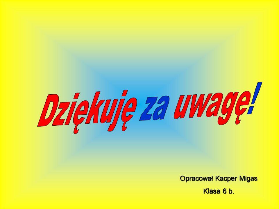 Opracował Kacper Migas Klasa 6 b.