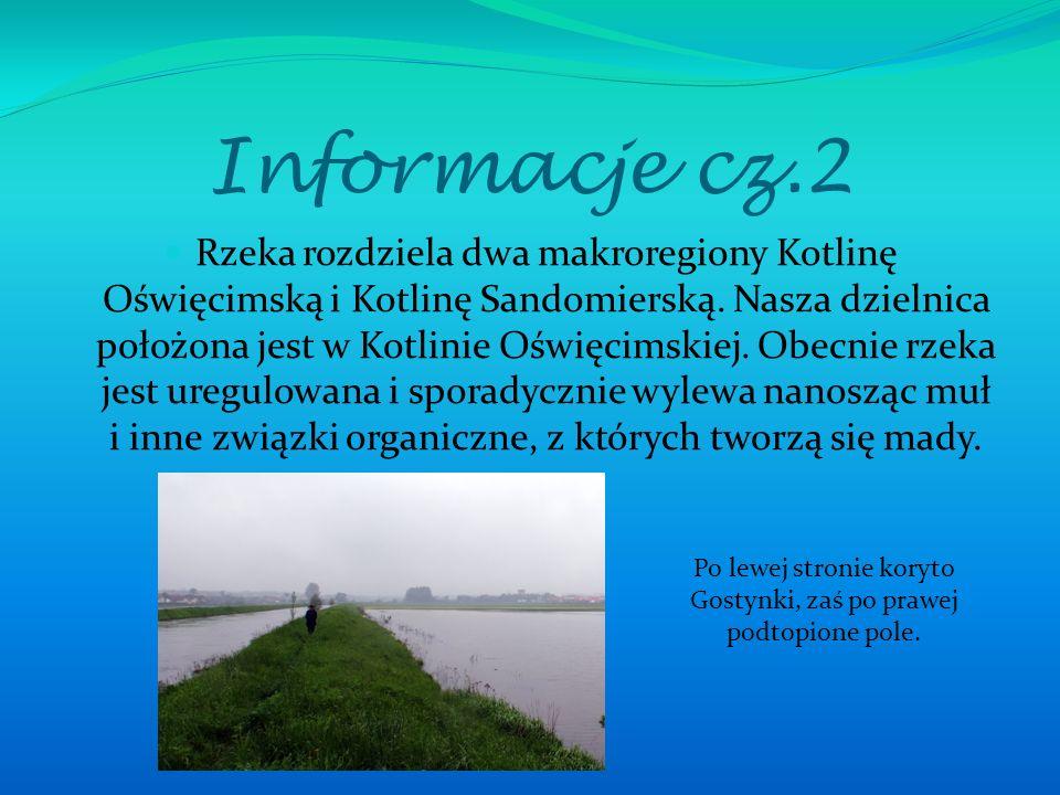 Informacje cz.2 Rzeka rozdziela dwa makroregiony Kotlinę Oświęcimską i Kotlinę Sandomierską. Nasza dzielnica położona jest w Kotlinie Oświęcimskiej. O