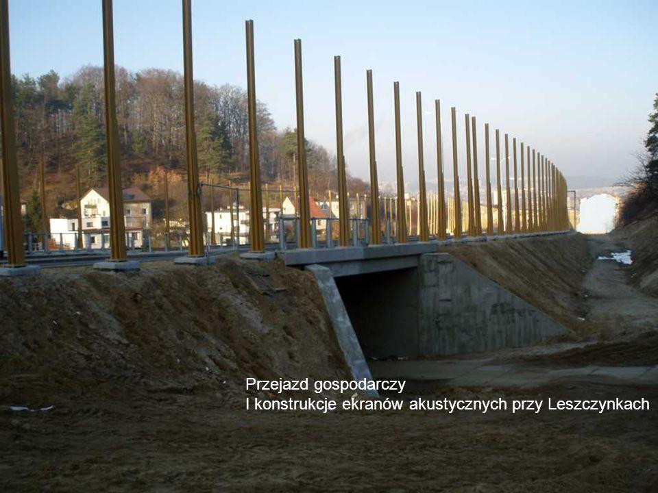 Budowa zbiorników retencyjnych i ekranów akustycznych i dróg pobocznych