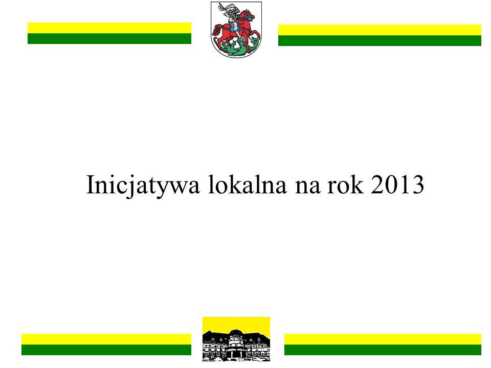 Inicjatywa lokalna na rok 2013