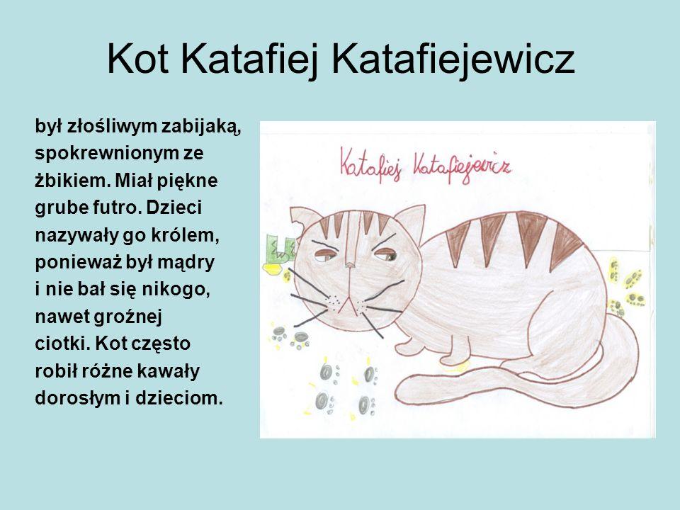 Kot Katafiej Katafiejewicz był złośliwym zabijaką, spokrewnionym ze żbikiem. Miał piękne grube futro. Dzieci nazywały go królem, ponieważ był mądry i