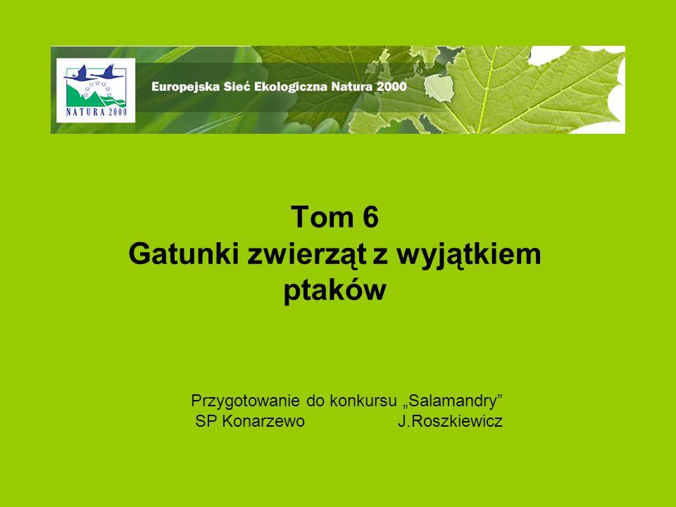 """Tom 6 Gatunki zwierząt z wyjątkiem ptaków Przygotowanie do konkursu """"Salamandry SP KonarzewoJ.Roszkiewicz"""