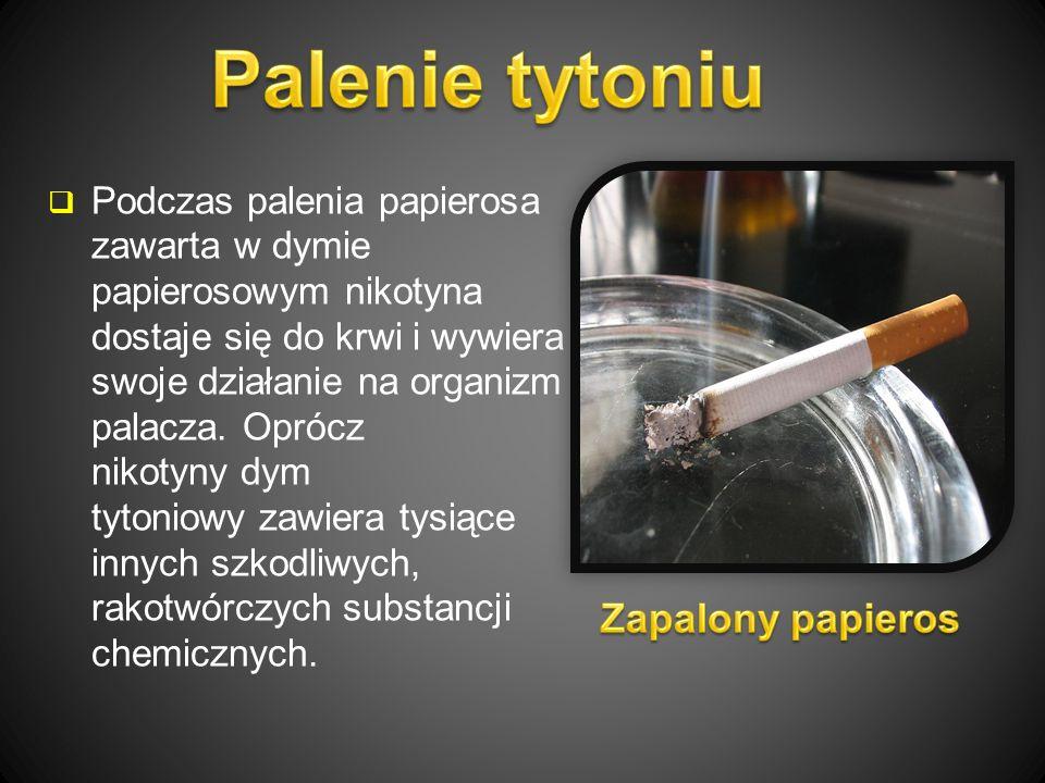  Podczas palenia papierosa zawarta w dymie papierosowym nikotyna dostaje się do krwi i wywiera swoje działanie na organizm palacza.