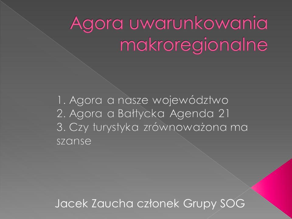 Jacek Zaucha członek Grupy SOG