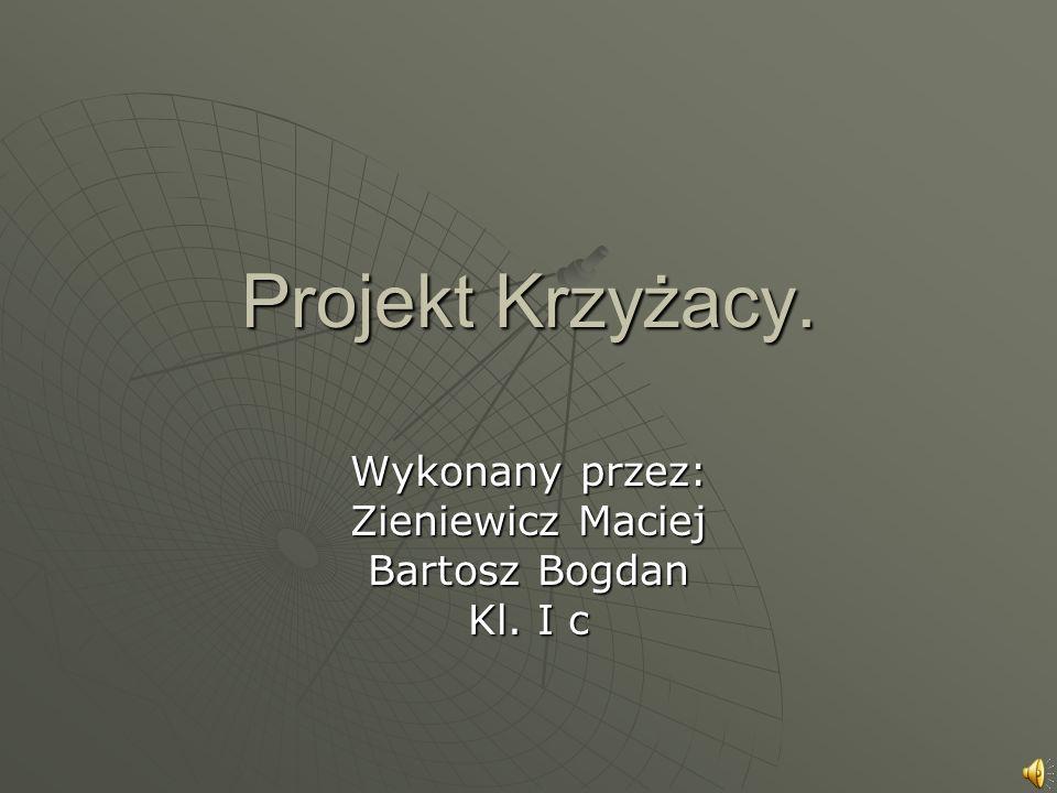 Projekt Krzyżacy. Wykonany przez: Zieniewicz Maciej Bartosz Bogdan Kl. I c