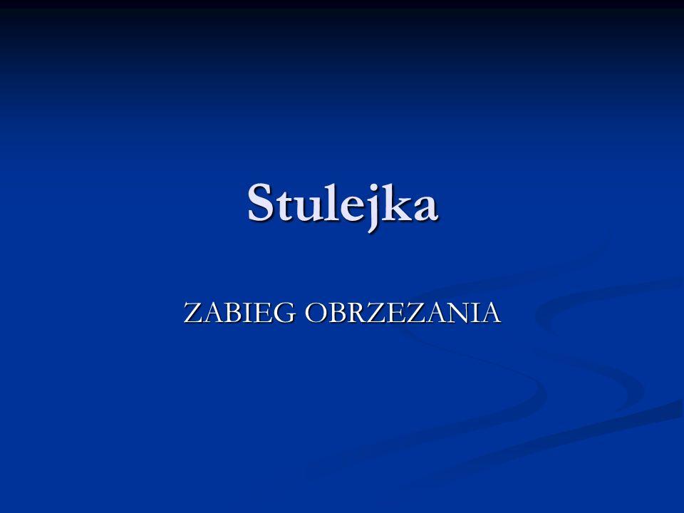 Stulejka (łac.
