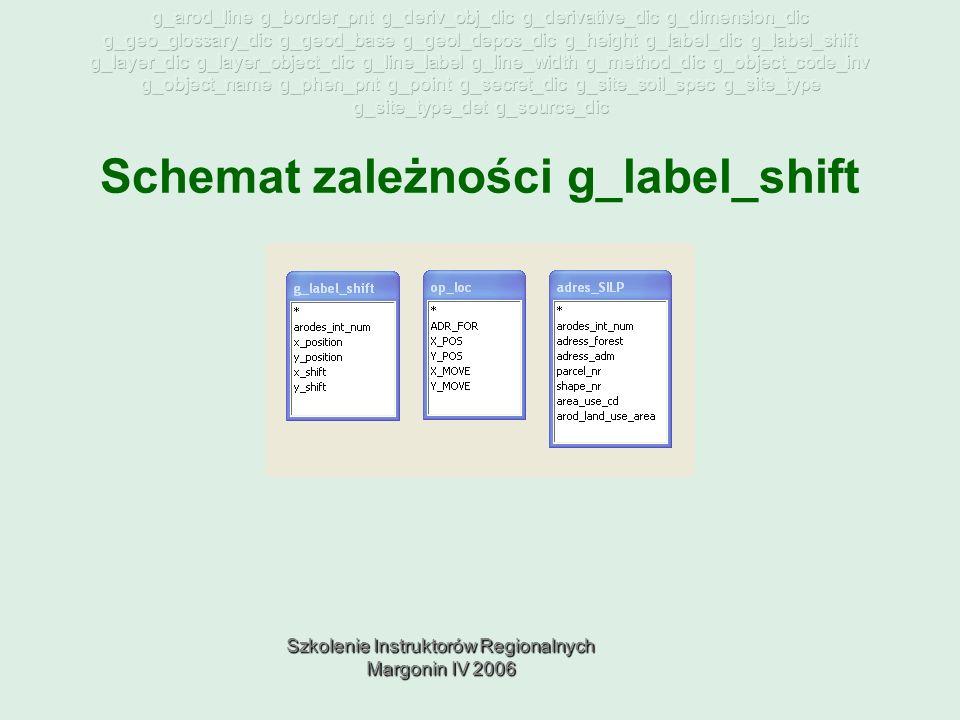 Szkolenie Instruktorów Regionalnych Margonin IV 2006 Schemat zależności g_label_shift