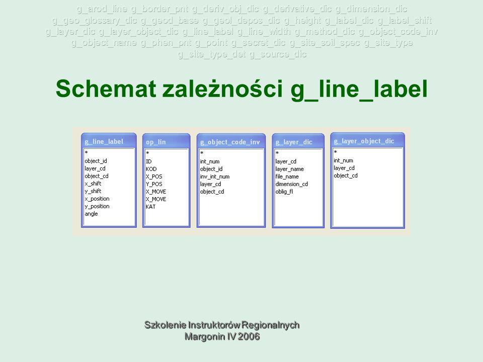 Szkolenie Instruktorów Regionalnych Margonin IV 2006 Schemat zależności g_line_label