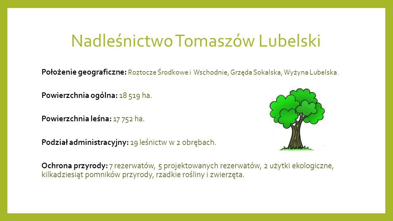 Nadleśnictwo Tomaszów Lubelski Położenie geograficzne: Roztocze Środkowe i Wschodnie, Grzęda Sokalska, Wyżyna Lubelska.