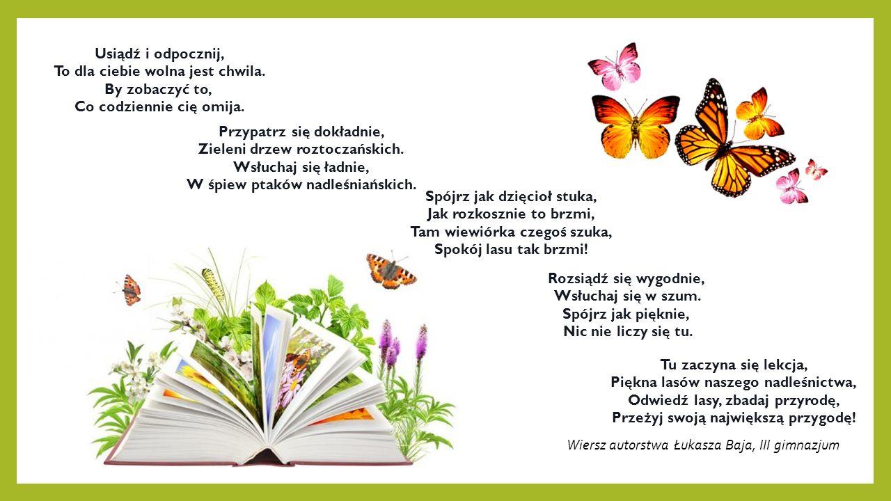 Wiersz autorstwa Łukasza Baja, III gimnazjum Usiądź i odpocznij, To dla ciebie wolna jest chwila.