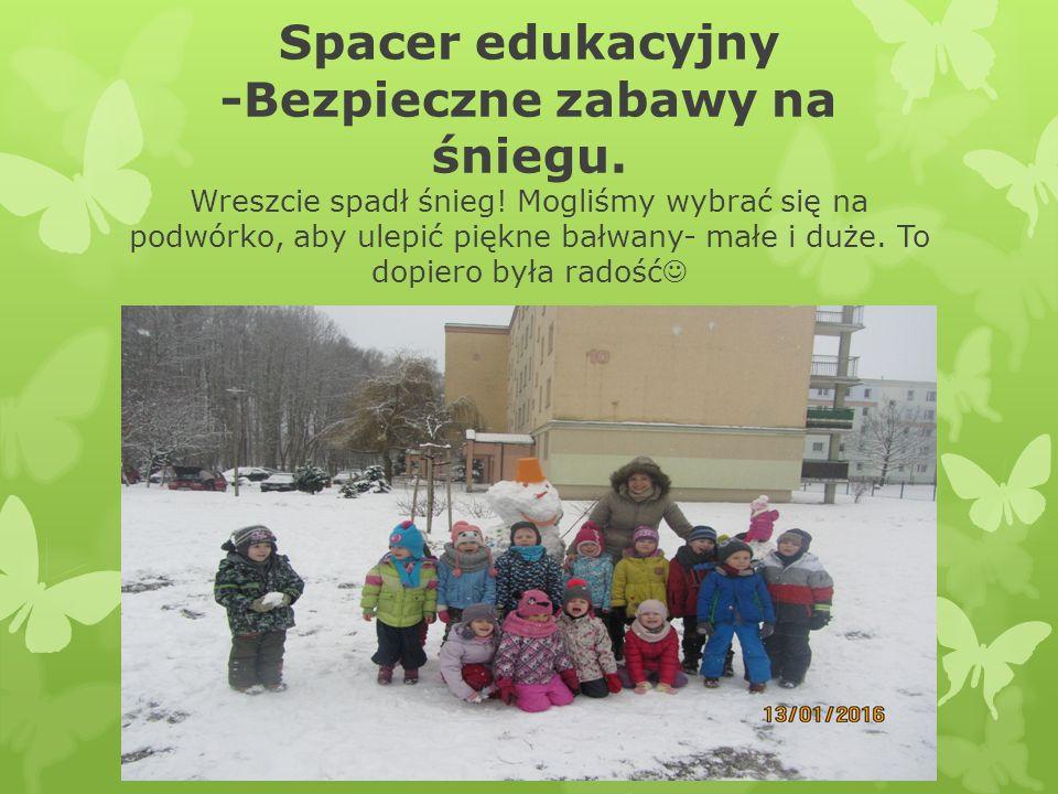 Spacer edukacyjny -Bezpieczne zabawy na śniegu. Wreszcie spadł śnieg.