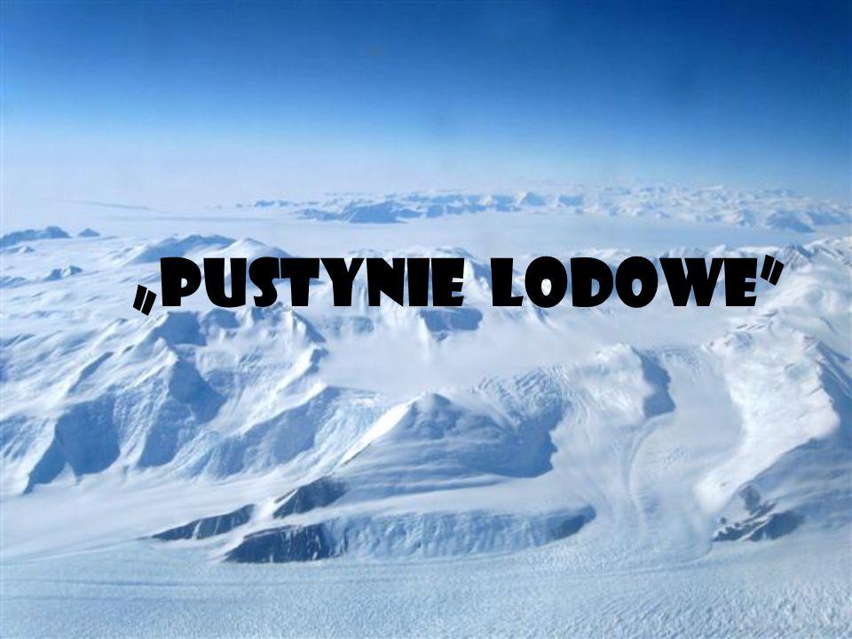"""""""PUSTYNIE LODOWE"""""""