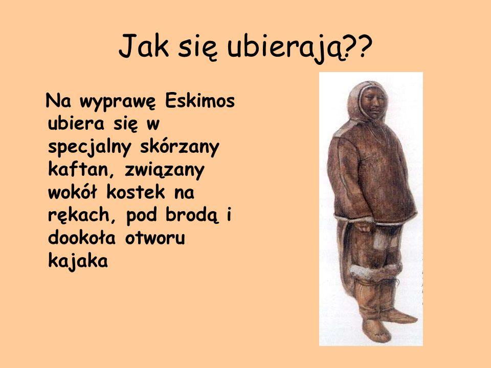 Jak się ubierają?? Na wyprawę Eskimos ubiera się w specjalny skórzany kaftan, związany wokół kostek na rękach, pod brodą i dookoła otworu kajaka